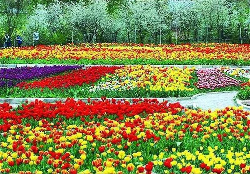 دهکده گل و گیاه در ارومیه افتتاح می شود