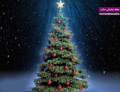 درخت کریسمس چیست؟