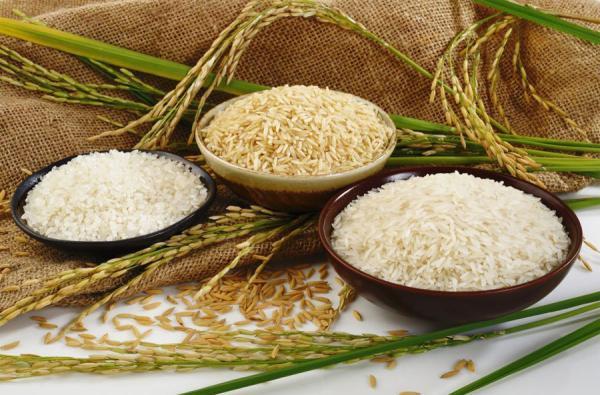 6 نکته مهم در مصرف روزانه برنج